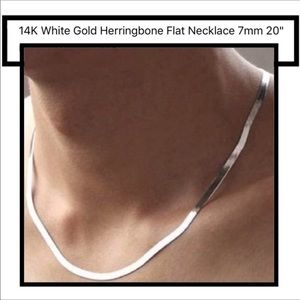 Jewelry - 14k White Gold Filled Flat Herringbone Necklace